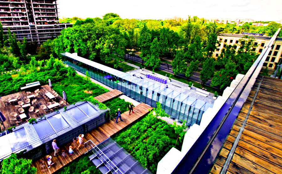 Widok z zielonego dachu