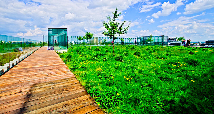 Ogród na dachu Centrum Spotkania Kultur