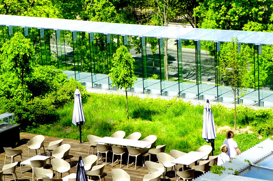 Atrakcje turystyczne Lublina - ogród na tarasie Centrum Spotkania Kultur