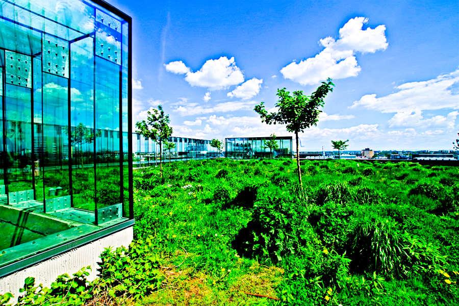 Atrakcje turystyczne Lublina - zielony dach Centrum Spotkania Kultur